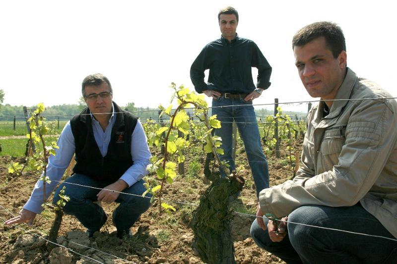The Michel Family in Their Vineyards in Burgundy - Winemakers & Vineyard Owners of Domaine Michel